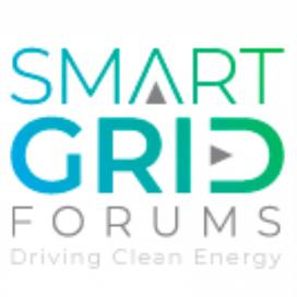 Smart Grid Flexibility 2019