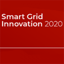 Smart Grid Innovation 2020