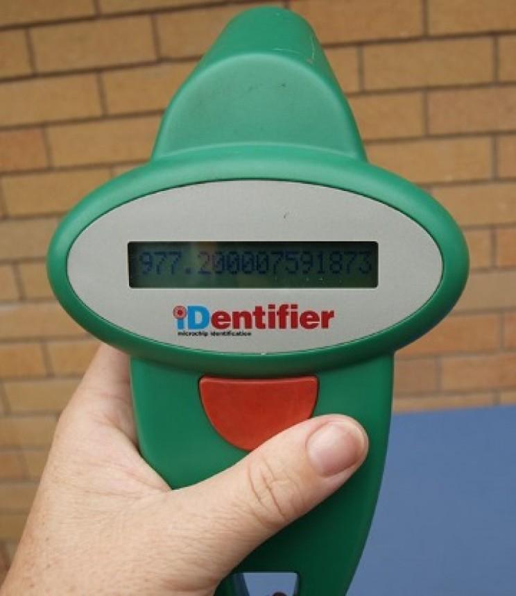 Pet RFID scanner