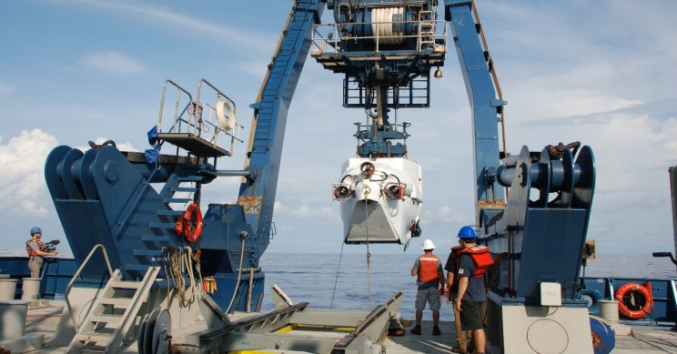 Lengthy 85 Mile Stretch of Coral Reef Discovered