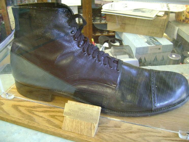 Robert Wadlow shoe