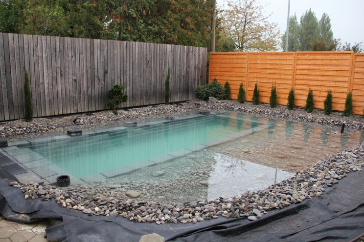 Redditor Shows, Step-by-Step, How He Built an Amazing Pond in His Backyard