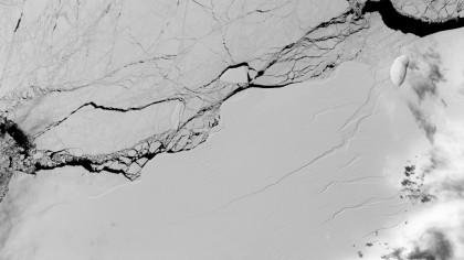 Timelapse Shows How This Trillion-Ton Iceberg Broke off Antarctica