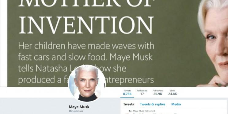 Maye Musk Twitter Account