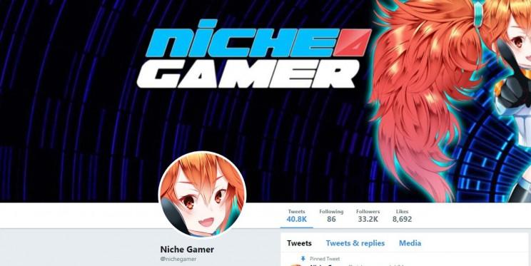 Niche Gamer Twitter Account
