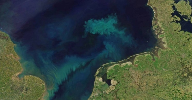Study Reveals the Ocean Will Shift Color This Century