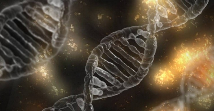 Watch Out CRISPR-Cas9! There's a New and Smaller Gene Editor
