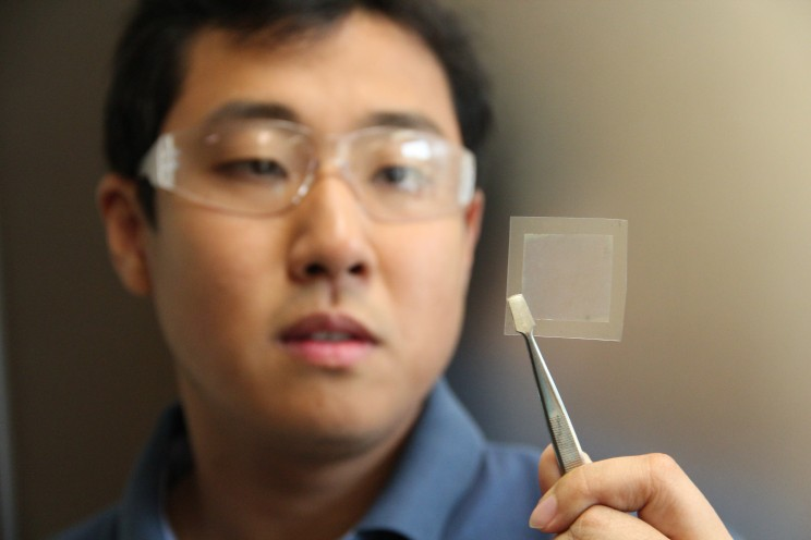 New Soybean-Based Graphene Filter Makes Dirty Harbour Water Drinkable