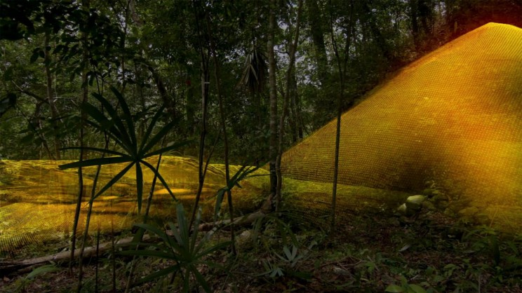 Researchers Use LiDAR to Find 60,000 Mayan Ruins Hidden in a Jungle