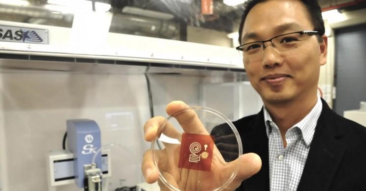 Wood Replaces Plastic in New IoT Sensors