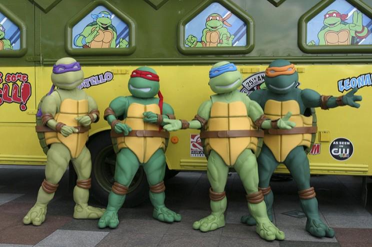 Science Cartoons turtles