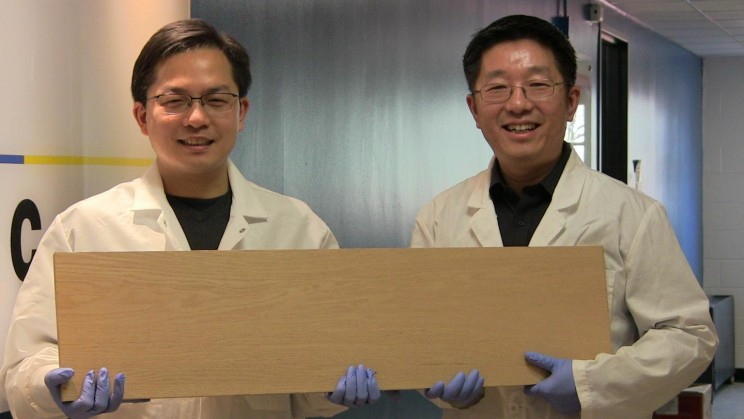 Researchers Create 'Super Wood' That Could Rival Steel