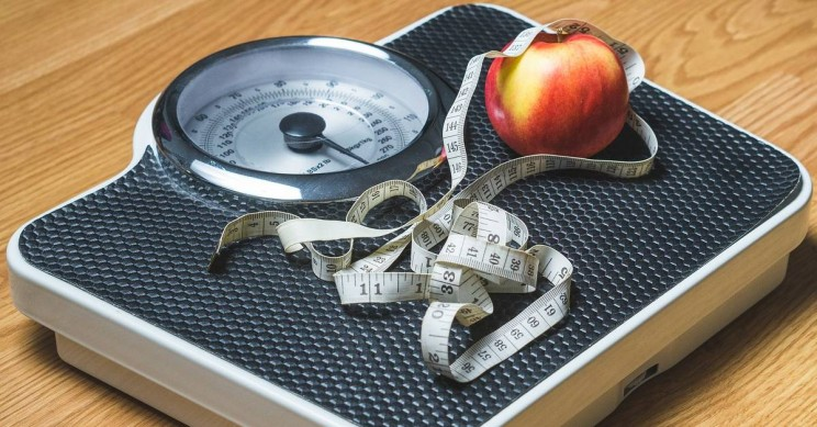 Tracking Food Helps You Lose Weight Without a Diet