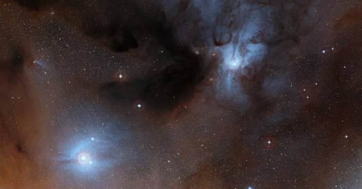 We May All Be Star Material, Finds New Study