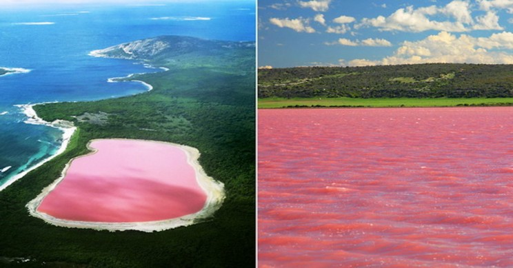 Lake Hillier: Australia's Pink Lake and the Story Behind It