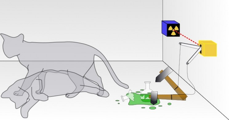 Schrödinger's Cat Paradox: Who Killed the Cat?