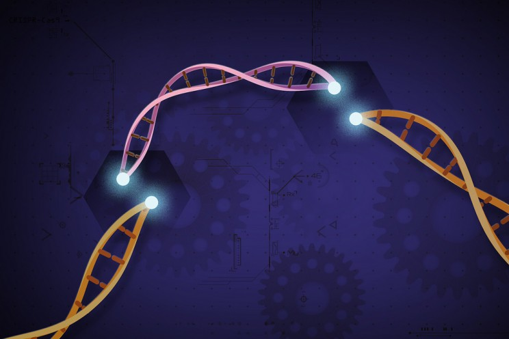 CRISPR Gene Editing Could Cause DNA Damage and Extensive Mutations