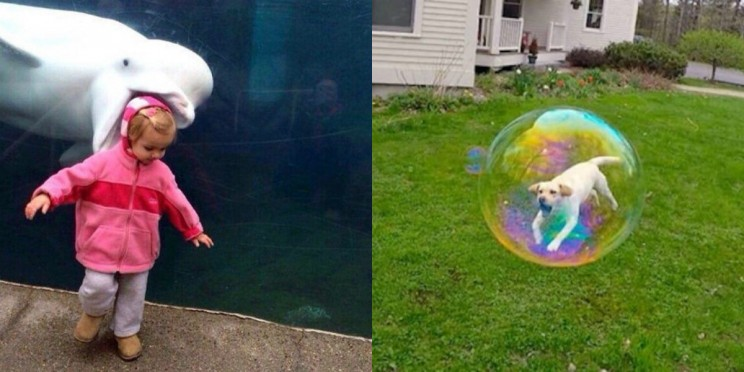28 Perfectly Timed Photos That Will Make You Look Twice