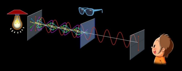 Polarization filters light so that it vibrates in one direction.