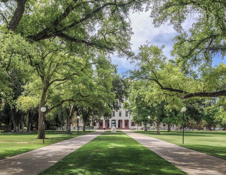 Top 17 Greenest University Campuses Around the World