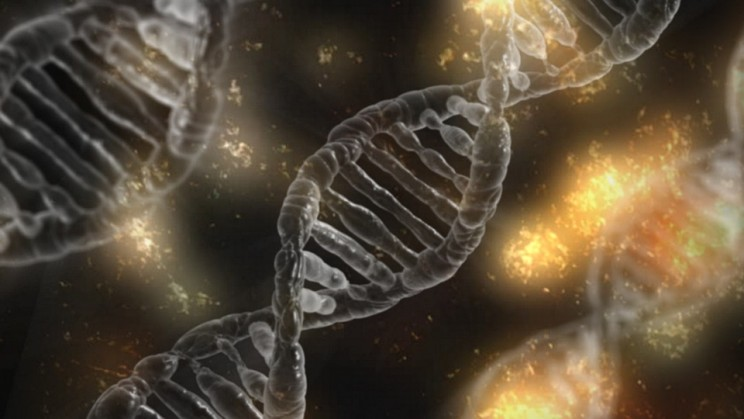 11 Developments and Discoveries in Human Biology and Medicine Over the Past Ten Years