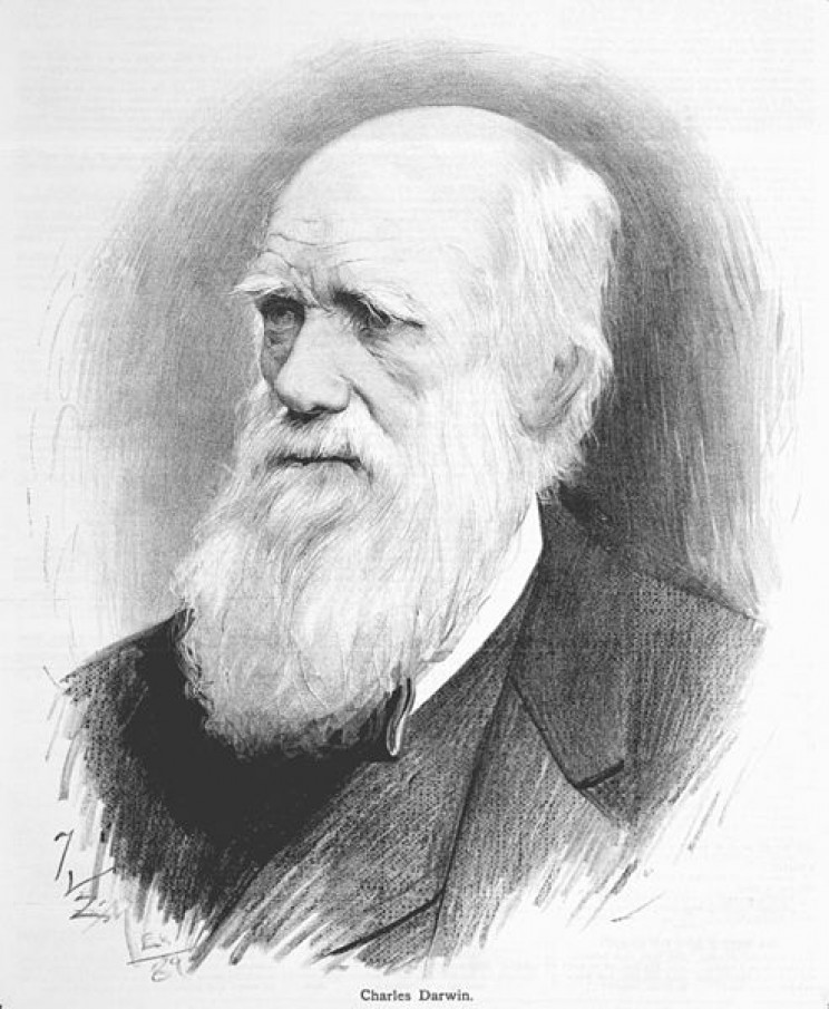 ancient theories of evolution Darwin