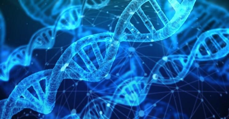 DNA CRISPR