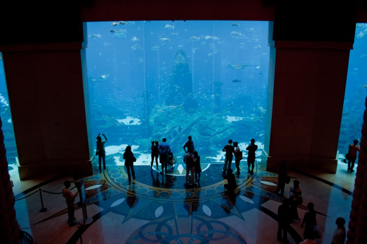 5 Unbelievable Underwater Hotels and the Engineering That Made Them Possible