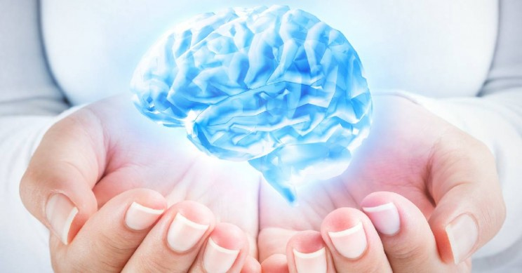 The Brain Processes Abstract and Concrete Concepts Differently
