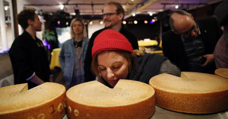 Art And Science Meet to Discover Hip Hop Makes Cheese Tastier