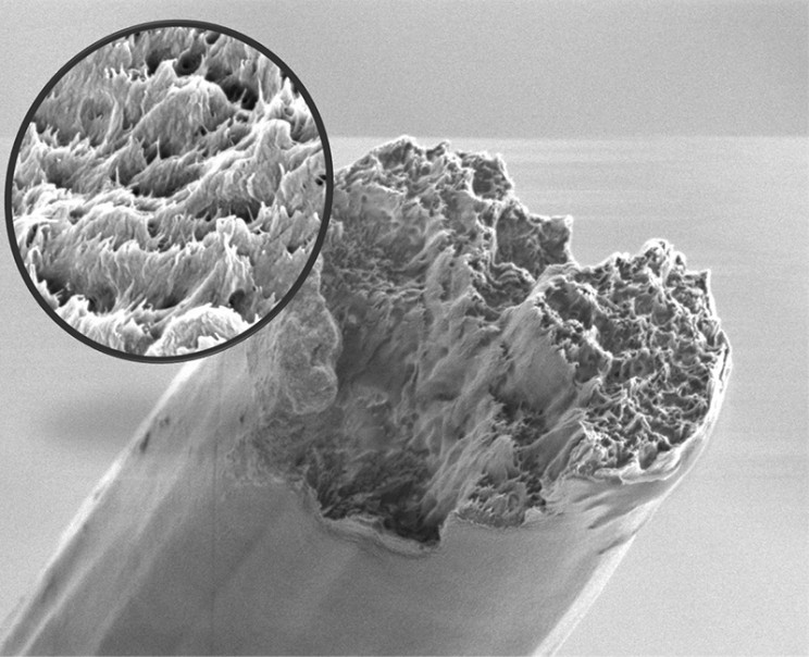 Researchers Develop New Bio-Based Material Stronger Than Spider Silk