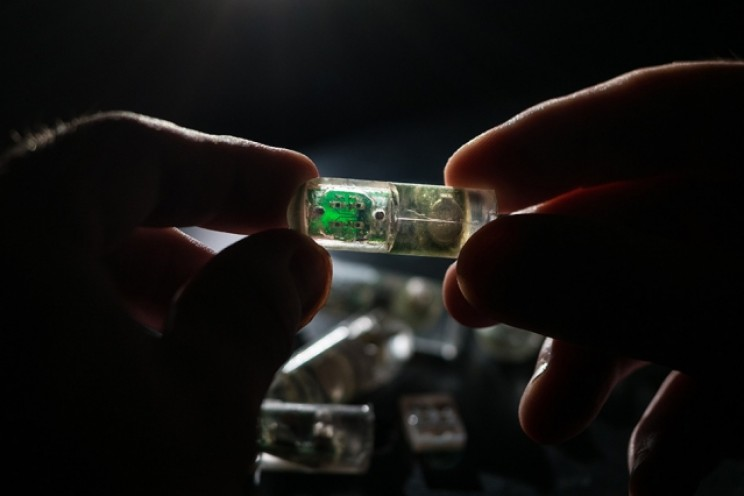 Scientists Develop Ingestible 'Bacteria on a Chip' That Could Diagnose Gastric Bleeding