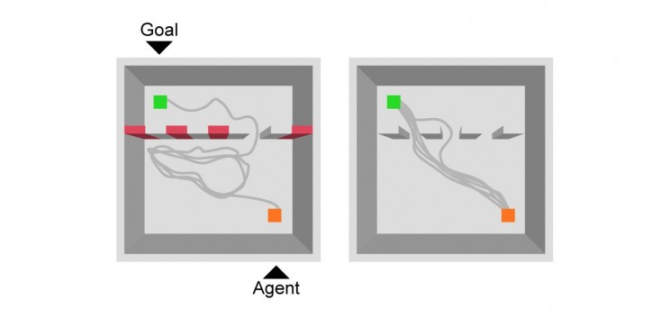 Maze-Solving Artificial Intelligence Teaches Itself to Take Shortcuts