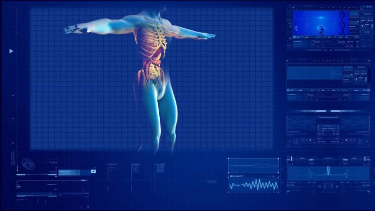 Body Data