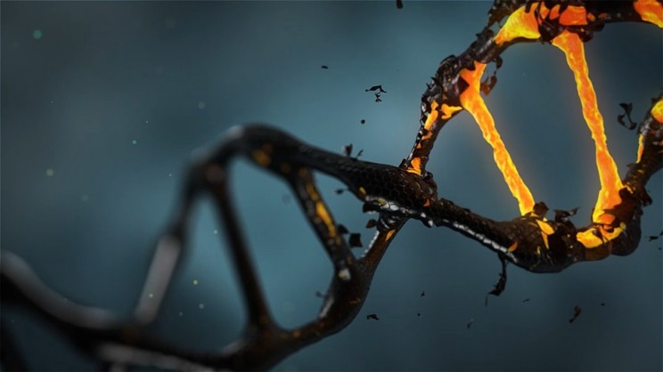 Footage of CRISPR Editing DNA in Seconds Was Just Made Public