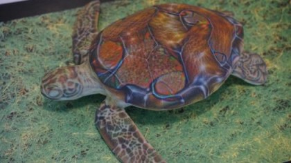 Researchers Fool Image Recognition Software Into Labeling This Turtle as a Rifle
