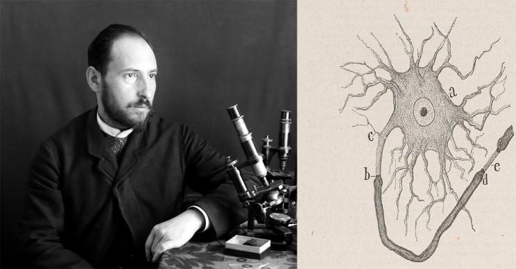 Santiago Ramon y Cajal Neuron Drawing