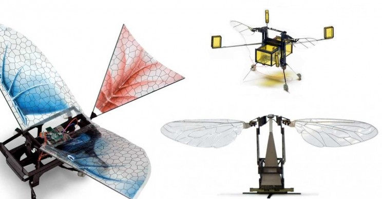 Bug Life: These 5 Robots Were Inspired by Insects