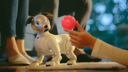 Sony Has Resurrected Its Iconic Robotic Pet Dog Aibo