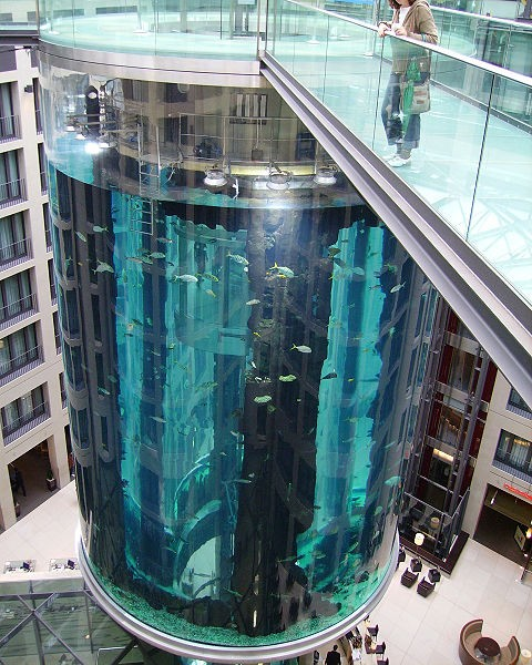 You Can Ride An Elevator Inside the World's Largest Cylindrical Aquarium