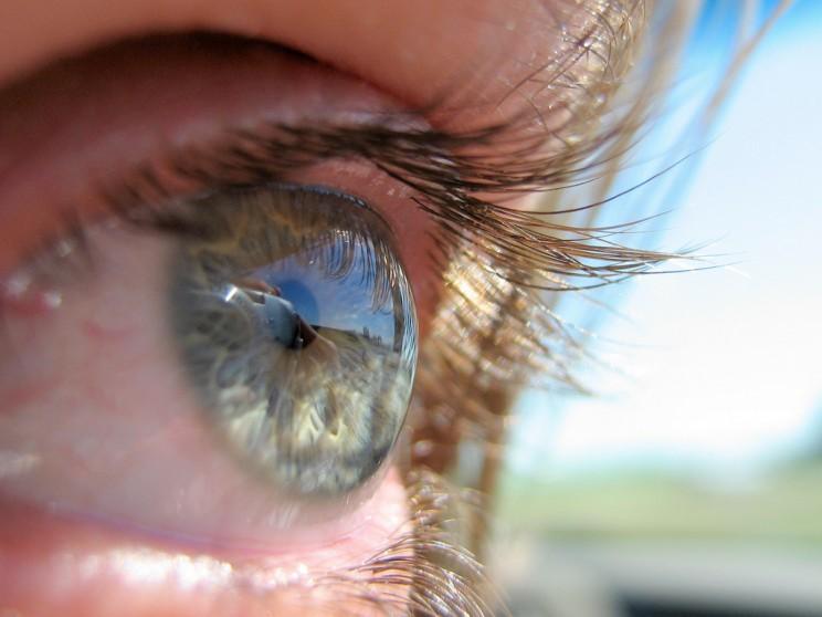 Bionic Lens