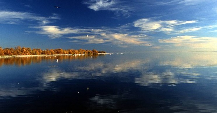 Salton Sea: Largest Lake of California Born From An Engineering Mistake