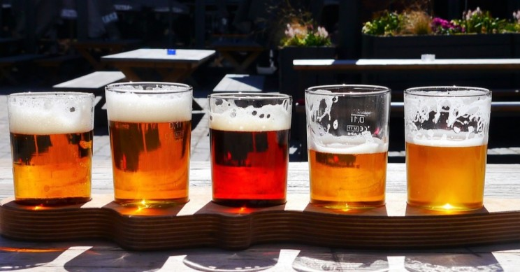 Love Beer? Climate Change is Threatening Your Favorite Brews, New Study Says