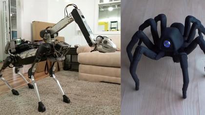 11 Amazing Animal-Inspired Robots