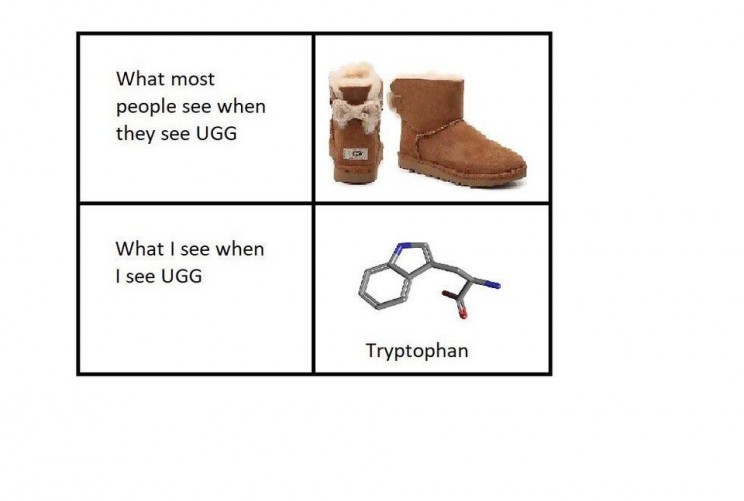funny memes about science Tryptophan