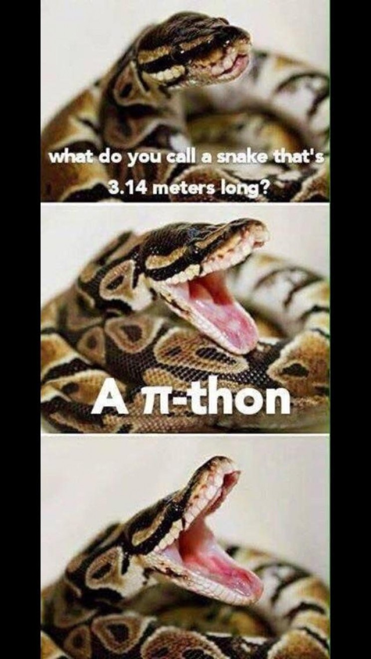 funny memes about science snake