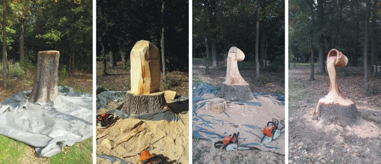 This Engineer Turned Artist Transforms Dead Wood into Incredible Works of Art