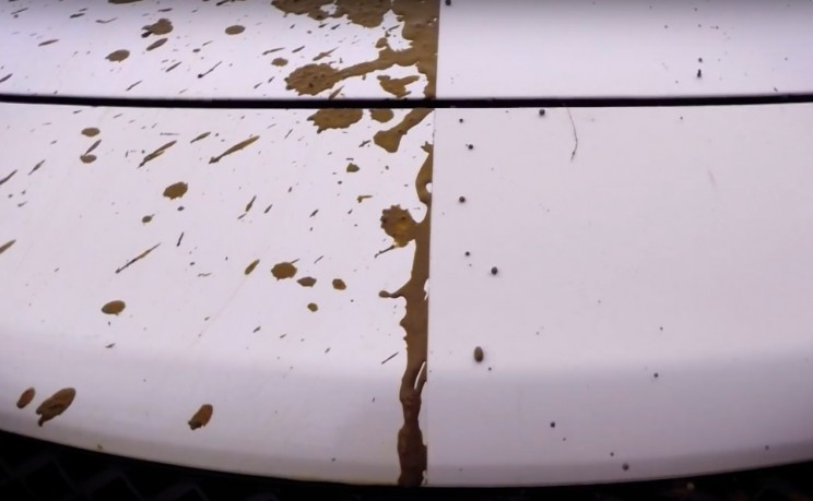 This Self-Cleaning Car Paint Could Put Car Washes out of Business