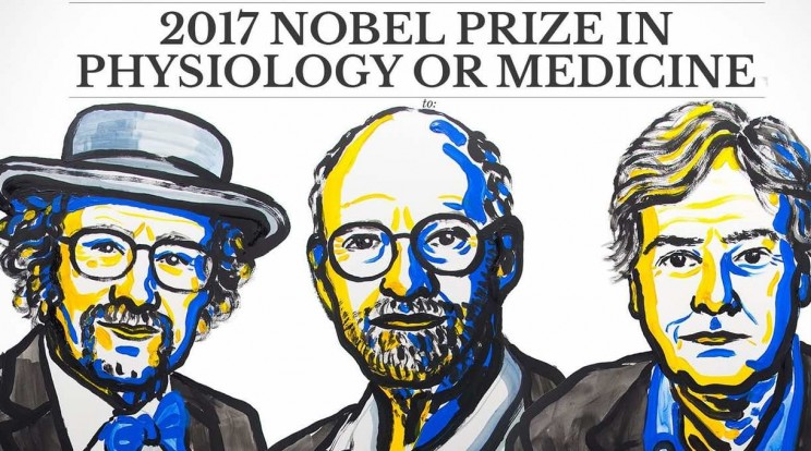 Nobel Prize in Medicine Awarded for the Discovery of How Our Cells Track Time