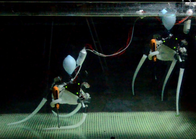 This Octopus-Inspired Robot Can Swim, Grasp Objects and Crawl Around